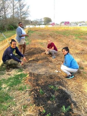 garden initiative 2